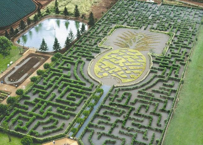 Dole.Plantation.original.13668